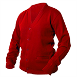 Scarlet Red Letter Sweater / Varsity Sweater