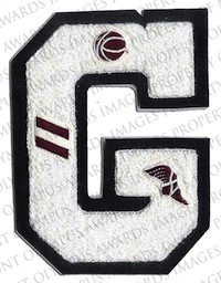 Varsity Letter with Embroidered Swiss Inserts
